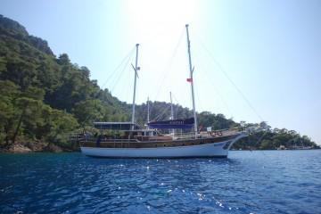 Yat Blue Pearl-7 Kabin